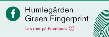 Gilla Green Fingerprint på Facebook